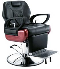 Professional Hydraulic Barber Chair