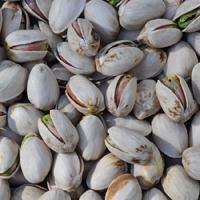 Alive, Organic California Pistachios