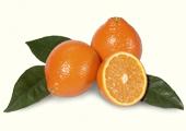 Tangelos & Tangerines