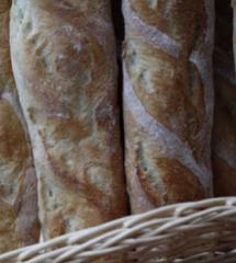 Florapan® Baking Cultures