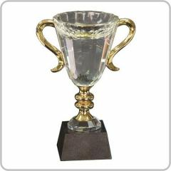 Crystal Trophy Cup Award