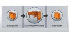 Top Load Carton Packing Systems
