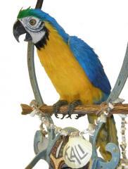Theme Park Quality TropiTronic™ Parrots