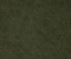 Crypton Suede Artichoke Fabric
