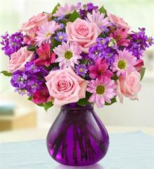 Lavender Dreams Flowers