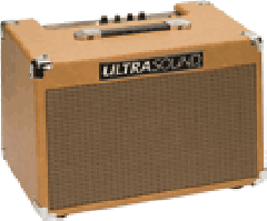 Acoustic Guitar Amplifier Ultrasound AG30