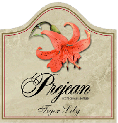 Tiger Lily Wine