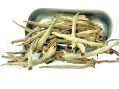 Kenya Silverback White Tea
