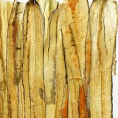 Hartie fină,de papirus