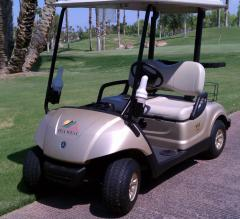 The Drive 2008 Yamaha Golf Car Sandstone Metallic