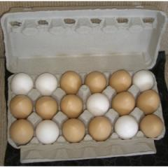 18ct. View Post Misprint Egg Box