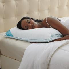BioSense Classic Memory Foam Pillow with Better