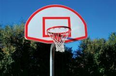 Commercial Basketball Goal