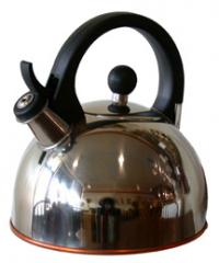 Gismo Tea Kettle