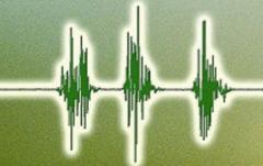 Fusion Voice2Text