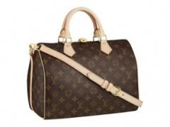 Louis Vuitton Speedy 30 with Shoulder Strap Bag