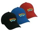 Hawaiian Popcorn Embroidered Hat