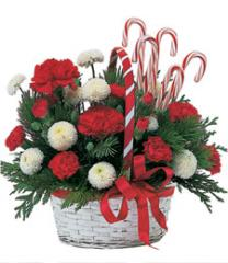 Holiday Basket with Candy Canes