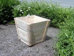 Wooden Tree Boxes
