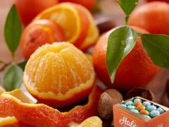Hale's Temple Oranges