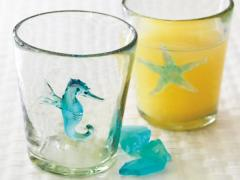 Starfish Icon DOF Glass