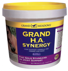Grand H.A. Synergy ™ Gold Standard In Joint