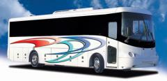 Synergy Bus