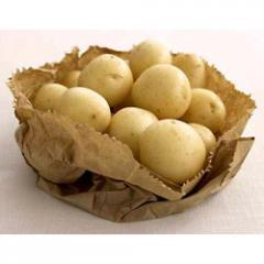 Organic Island Sunshine Potatoes