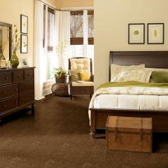 Ag Pride & Joy 12' Carpet