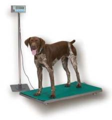 AWTX-816965001460 Medical Scale