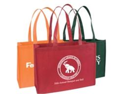 Standard Nonwoven Tote Bag