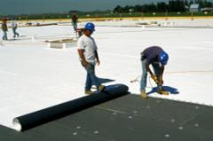 Thermoplastic Roof Membranes
