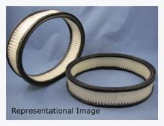 Ecogard Air Filter