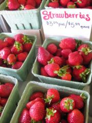 Fresh native strawberries