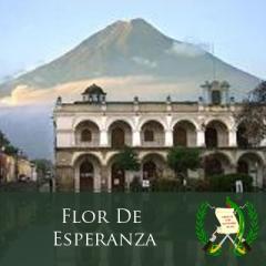 Decaffeinated Coffee Guatemala Antigua