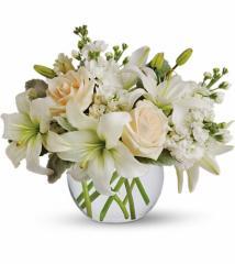 Isle of White Flowers
