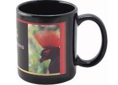 Full Color Black Stoneware Executive Mug