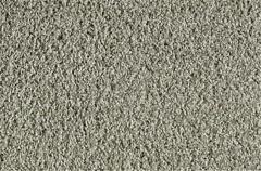 Current Fashion Carpet