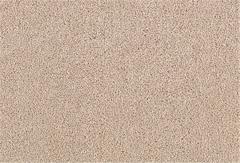 Celebrity Status Carpet