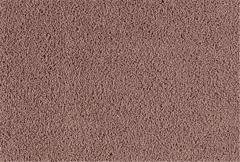 American Beauty Carpet