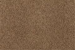 Island View Carpet