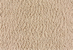 Simple Life Mohawk Carpet