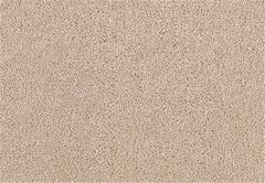 Celebrity Status Mohawk Carpet