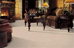 Confident Flair Mohawk Carpeting
