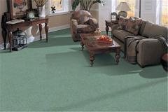 Simple Life Mohawk Carpeting