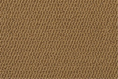 Island Oasis Mohawk Carpet