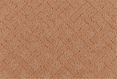 Lasting Luxury Mohawk Carpet