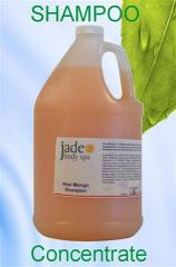 Kiwi Mango Shampoo CONCENTRATE 1-gallon case