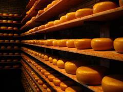 Cheese (mozzarella, cheddar, cream cheese and