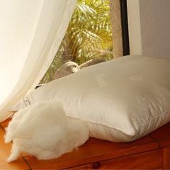 Certified Organic Wool Pillow (Heavy Fill)